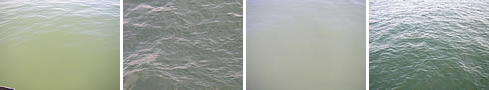 images of the sea surface